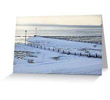 The freezing sea. Greeting Card