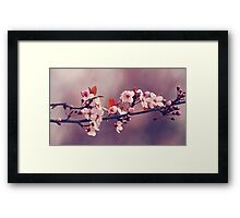 Soft side of Spring III Framed Print