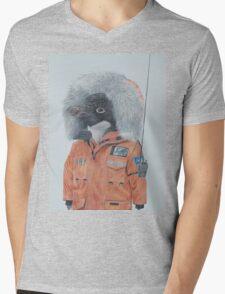 Antarctic Penguin Mens V-Neck T-Shirt