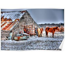 Old Barn - Springtown, Texas Poster