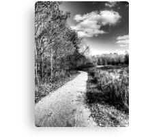 Walk it Out Canvas Print