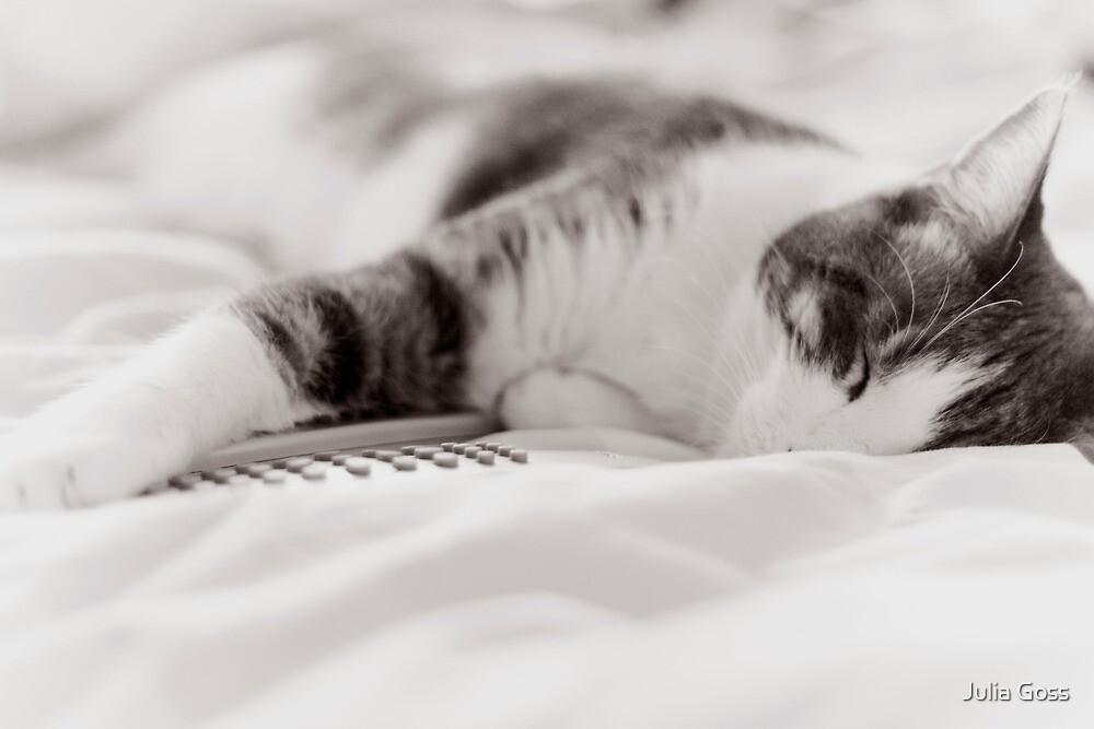 Dreaming away by Julia Goss
