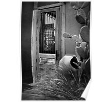 Tucson Door ~ Black & White Poster