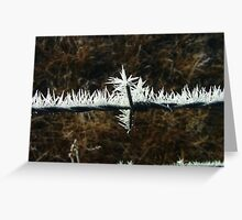 Extra pointy barbed wire Greeting Card