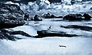 """""""Low Tide"""" by Heather Thorning"""