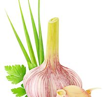 Fresh garlic with leaves by 6hands