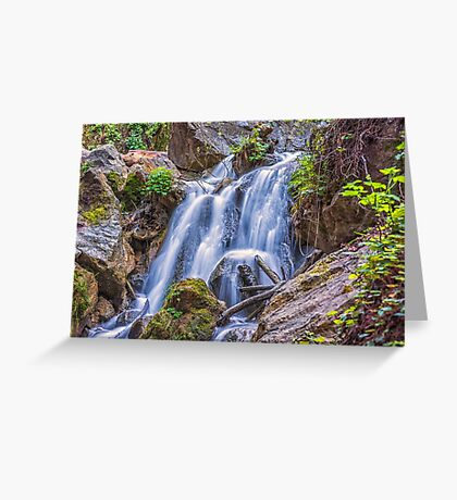 NATURE'S FLOW Greeting Card