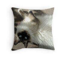 Dingle! Throw Pillow