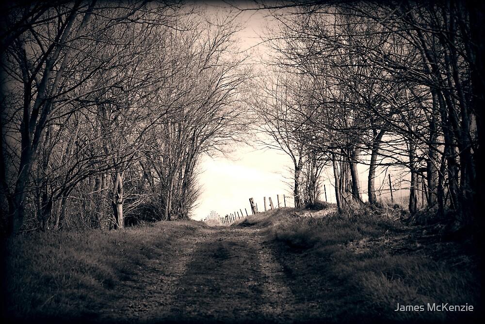 Before the Hallways by James McKenzie