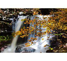 Autumn in Ricketts Glen 4.0 Photographic Print