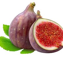Fresh figs by 6hands
