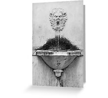 Marble fountain Lucca Italy Greeting Card