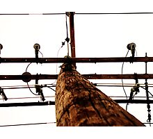 Details of Powerline Photographic Print