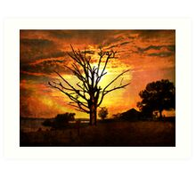Evening's Grandeur Art Print