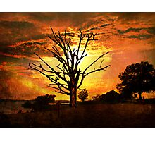 Evening's Grandeur Photographic Print
