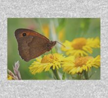 Meadow Brown Butterfly Kids Clothes