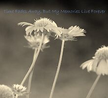 Time Fades Away, But My Memories Live Forever by Wanda Raines
