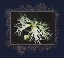 Dianthus Superbus - White One Piece - Long Sleeve