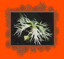 Dianthus Superbus - White Kids Tee