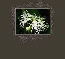 Dianthus Superbus - White Womens Fitted T-Shirt