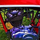 Ducati Single by Dave McBride