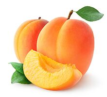 Apricots by 6hands