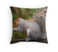 Num! Throw Pillow