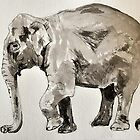 Elephant sketch (ink) by Emma Brooks-Mitrou