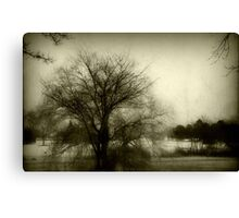 Calm before the storm!!! © Canvas Print