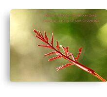 Religous Nature Photo II Canvas Print