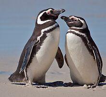 Aren't we Cute? by Krys Bailey