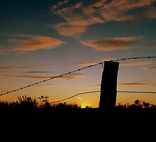 barbed sunset by fazza