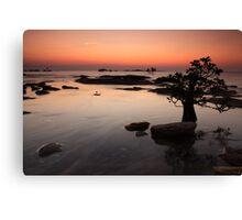 Nightcliff Sunset Canvas Print