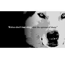 Wolves don't lose sleep over the opinion of sheep Photographic Print