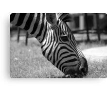Black & White in Monochrome Canvas Print