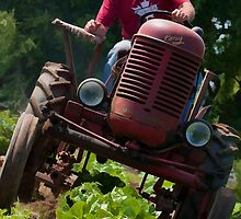 On Houtby Farm by Marilyn Cornwell