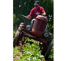 On Houtby Farm Photographic Print