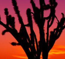 Sunset Over Mojave National Preserve Sticker