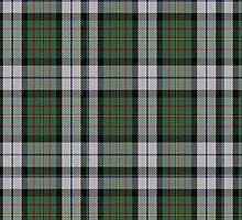 00313 MacLaren Clan/Family Dress Dance Tartan  by Detnecs2013