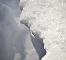 Mr. Snow Man by Susana Weber