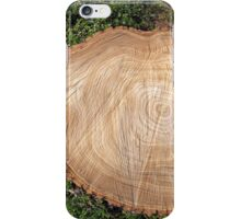 Fresh cut tree stump iPhone Case/Skin