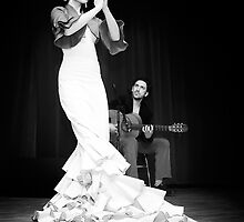 Flamenco nighte 1 by Aleksandar Topalovic