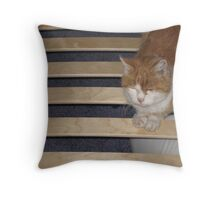 It izz MY bed! Throw Pillow