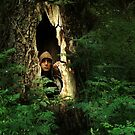 Wood goblin by fenist