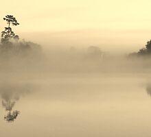 Foggy Morn by Joe Manno