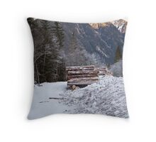 The Valley Below Throw Pillow