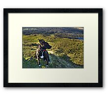 They May Well Call The Wind Mariah... Framed Print