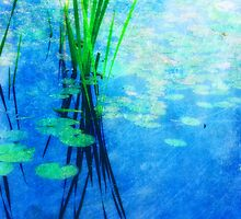 Ode to Monet by Softly