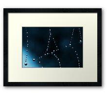Web In Blue Framed Print