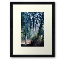 Morning at the Station take one Framed Print